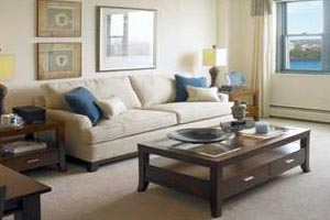 APT cares about your carpet; here are some useful carpet care tips.