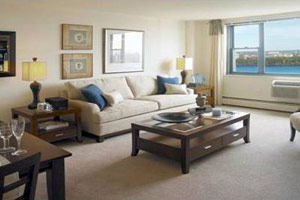 APT loves fresh, clean carpets just as much as you do!